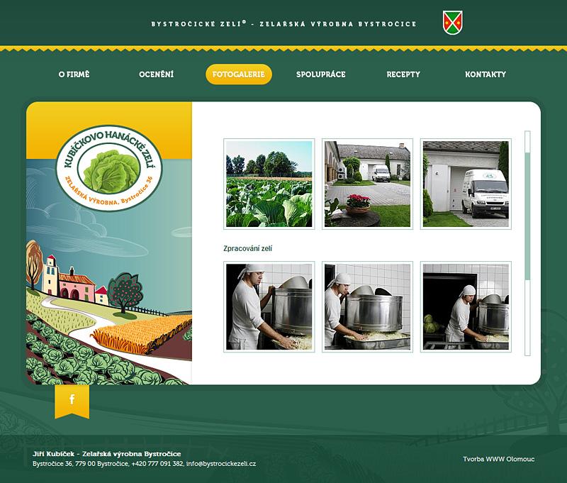 Website design orbinet zel bystro ice reference for Design reference sites